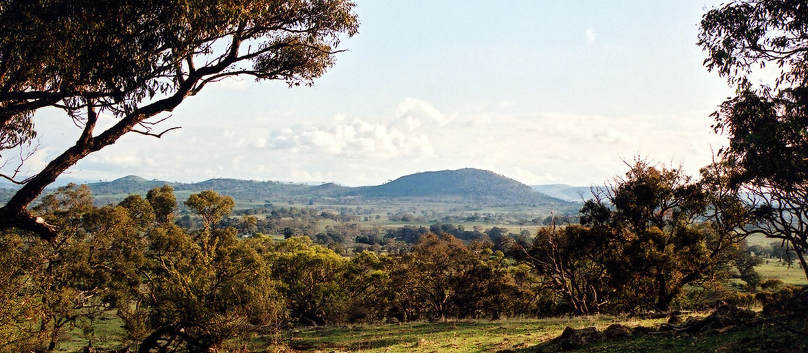 Bowning Hill