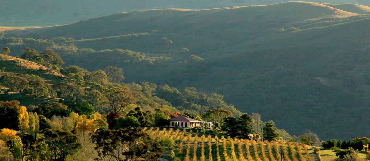 Wallaroo Brindabella Hills Winery Areial