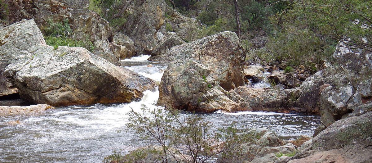 Wee Jasper Rocks