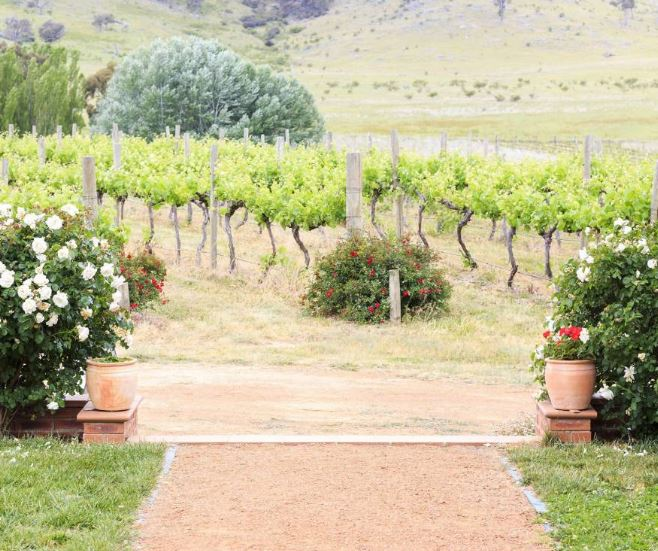 Image for Private: Brindabella Hills Winery – Duplication
